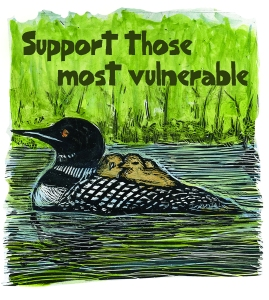 Support-the-most-vulnerable-loon